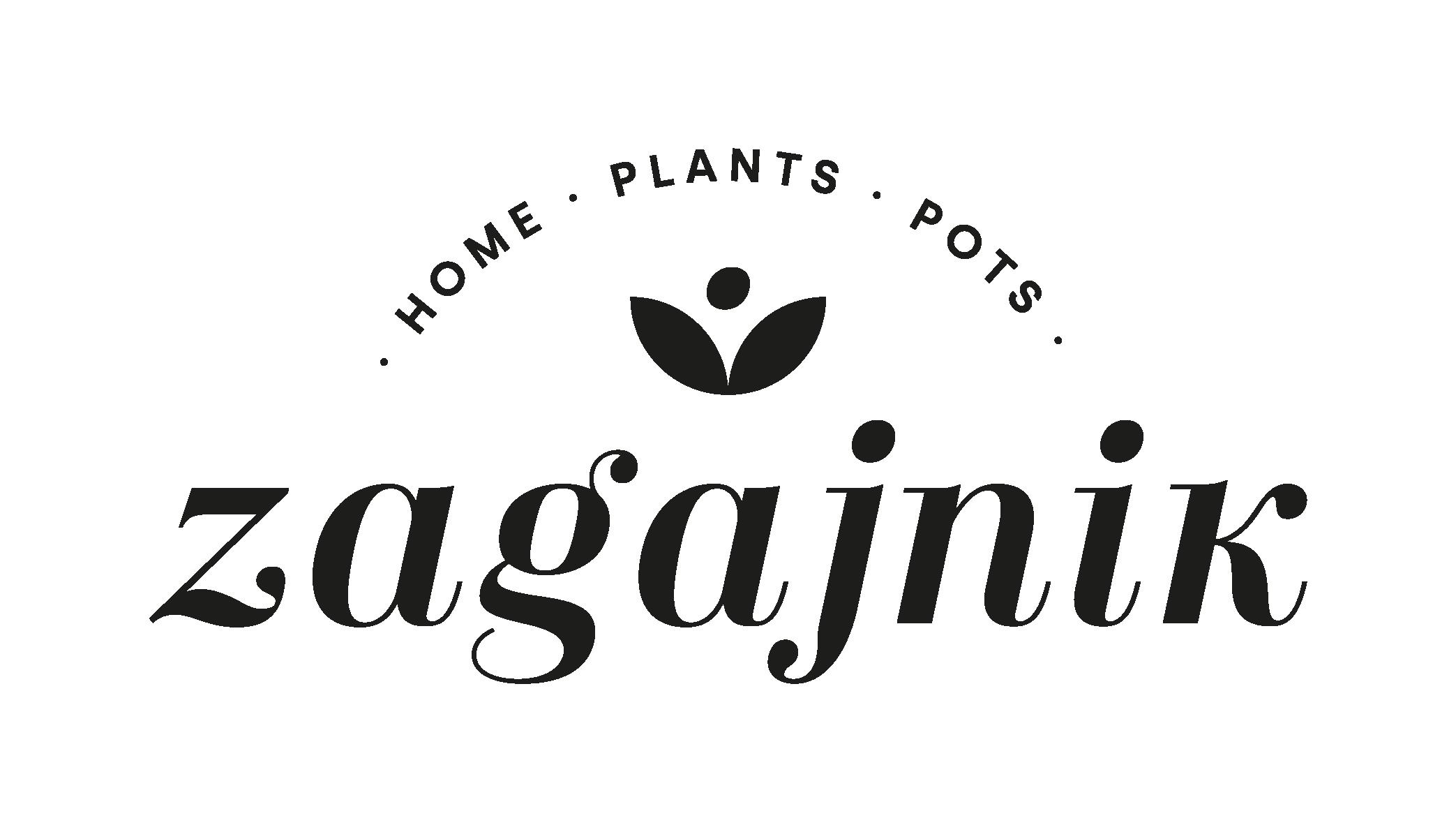 Zagajnik Rośliny - Porady i inspiracje